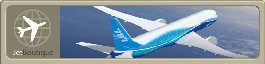 Site Logo and Boeing 787 Dreamliner