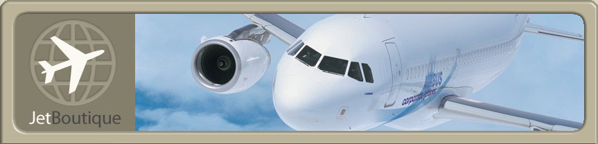 Site Logo and Airbus Corporate Jet