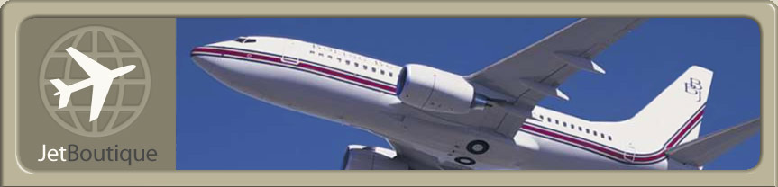 Site Logo and Boeing Business Jet
